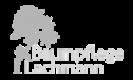 Baumpflege Lahmann
